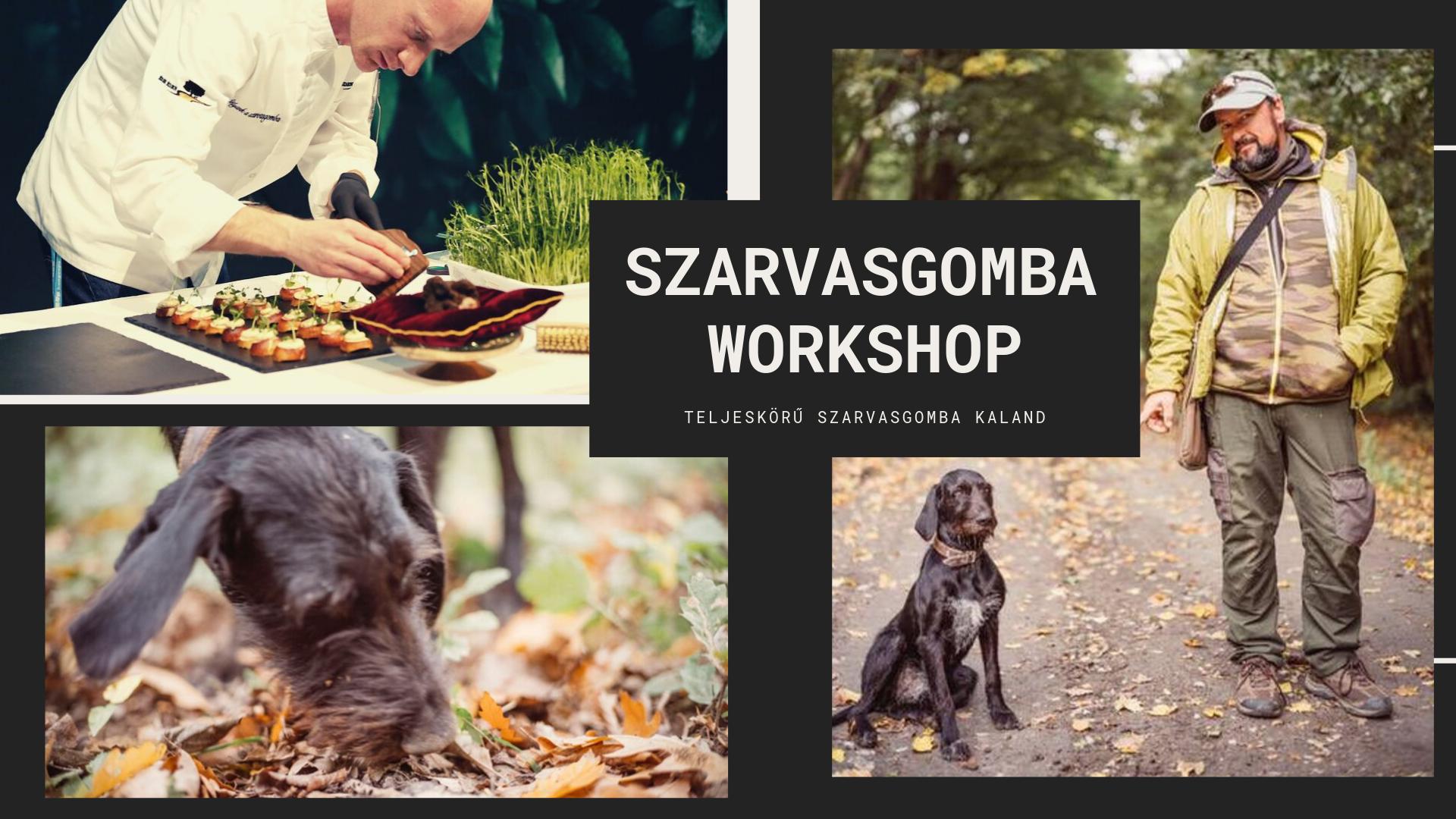 Szarvasgomba WORKSHOP – Erdő kincsei napon